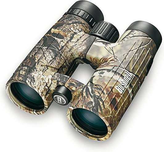 Bushnell Excursion EX 10x42