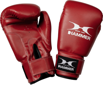 HAMMER Boxhandschuh Fun Fit, rot, 10 OZ, 93710