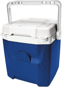 Igloo Quantum 18 cooler box (11.3 liters)
