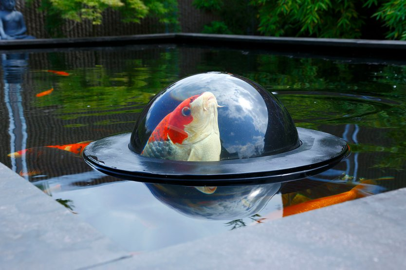 Velda Floating Fish Sphere
