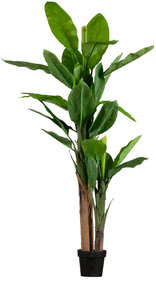 Woood Banana plant artificial plant