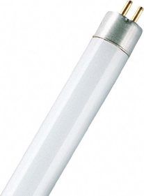 Osram G5 Tube fluorescent court