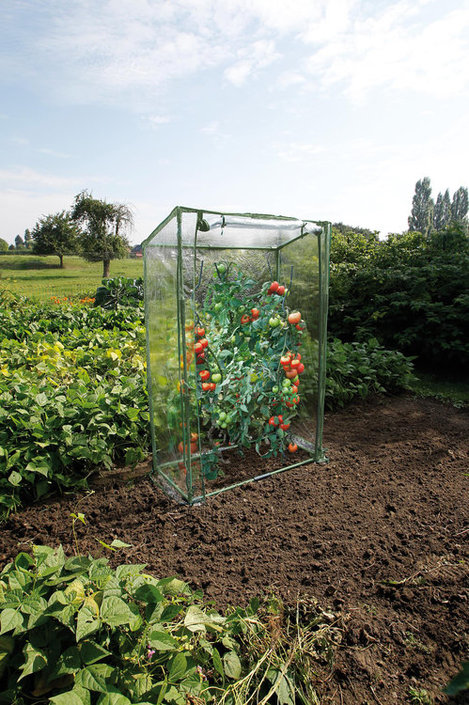 Nature Mini-tomatentuinkas