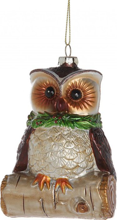 Hanging Owl on Branch