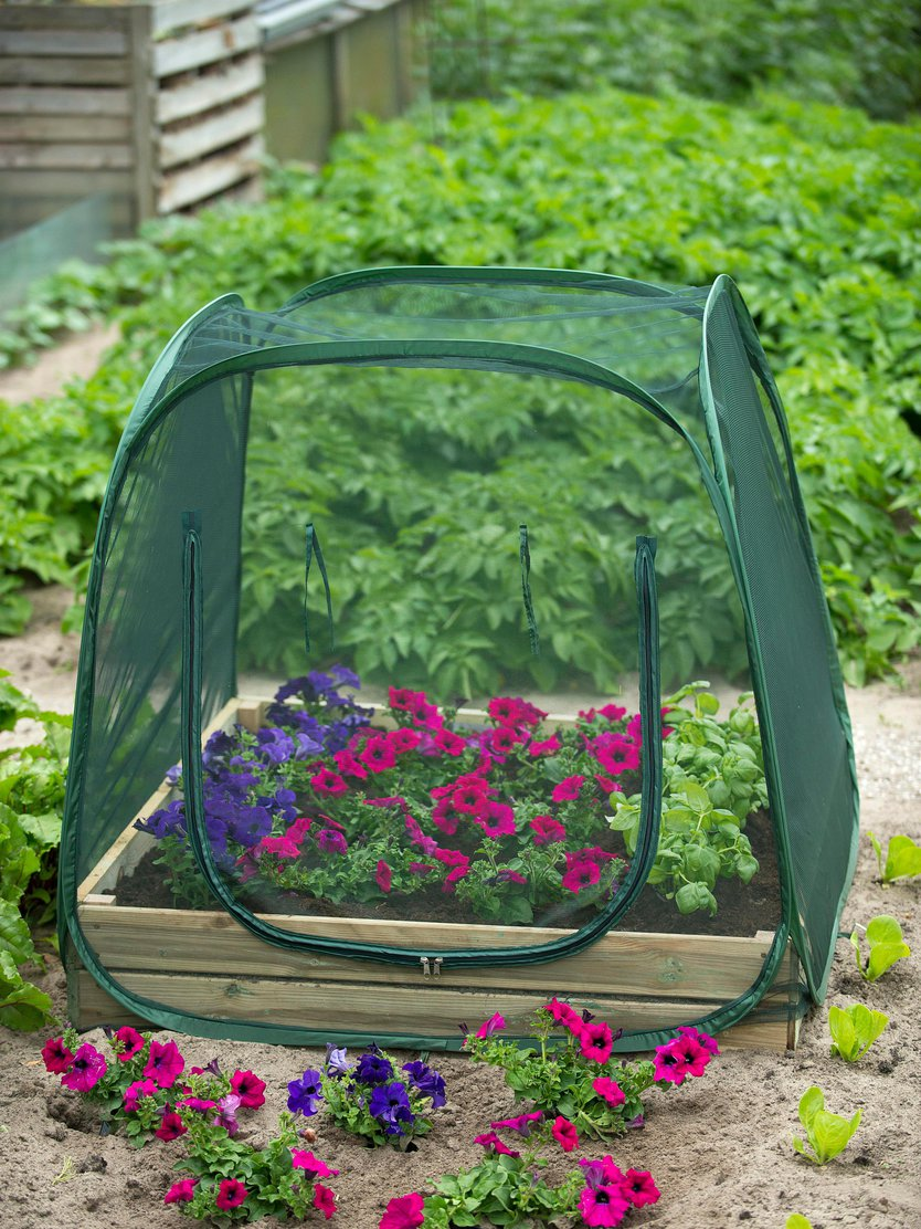 Nature Pop-up greenhouse Anti-insect
