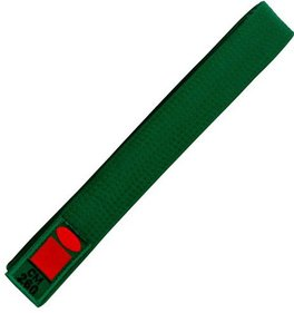 Essimo judo belt green