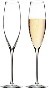 Waterford Elegance Wine Story Champagne glass - set of 2