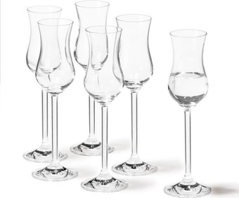 Leonardo Daily Grappa Glas - 6er Set