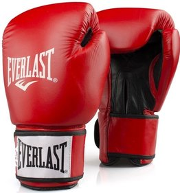 Everlast Rodney boxing glove