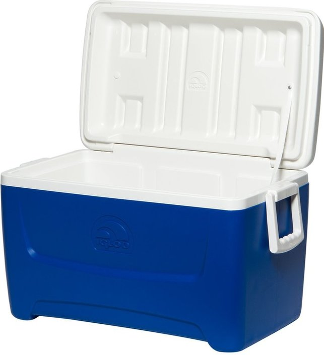 Igloo Island Breeze 48 koelbox