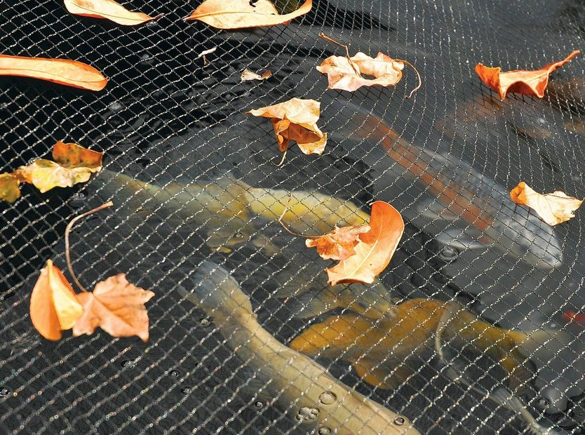 Hozelock Pond cover net
