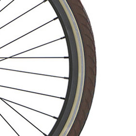 Cort velg 24 ZAC20 brown green mt