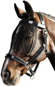 Harry's Horse black fly-brow belt