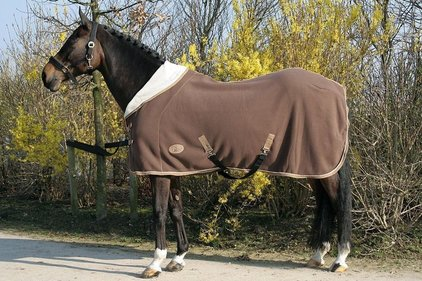 Harry's Horse 1/2 neck teddy blanket