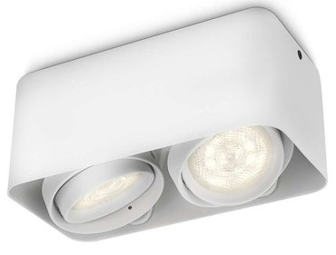 Philips myLiving Afzelia 2 spotlamp