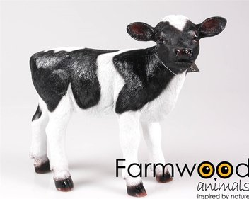 Farmwood Animals Portrait Kalb-Gartenbild