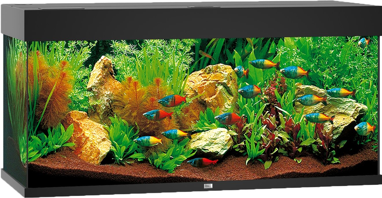 juwel rio 180 led aquarium kopen frank. Black Bedroom Furniture Sets. Home Design Ideas