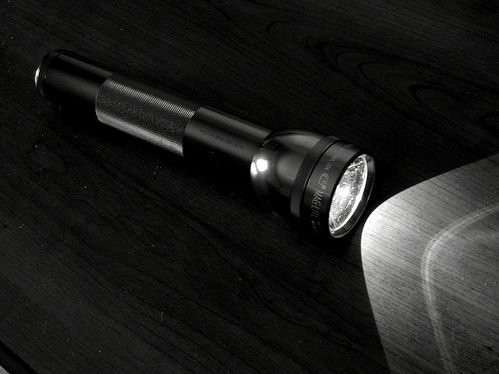 Maglite 2D LED zaklamp