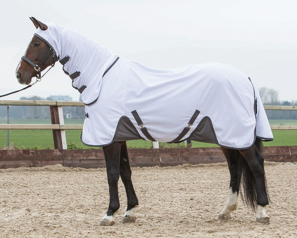 Harry's Horse Flyprotection vliegendeken met hals